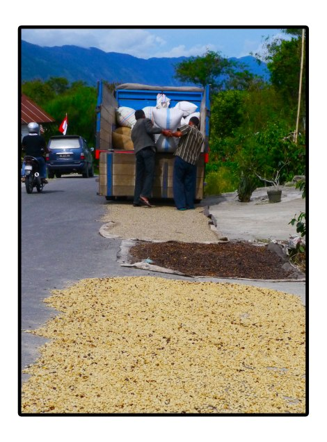 12 - Preparation-goya-coffee---Takengon-Indonesia