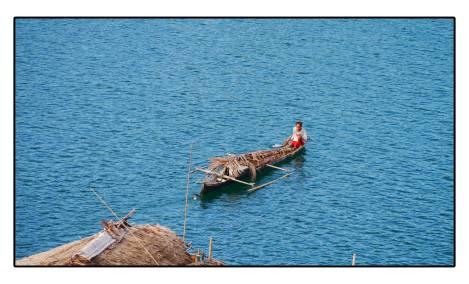 27 - palm-boat