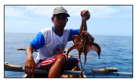 28 - octopus-fishing