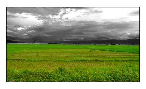 Dark-sky---Sulawesi